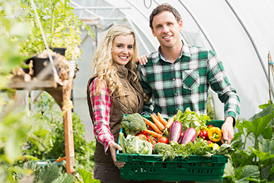 Couple holding basket of vegetables